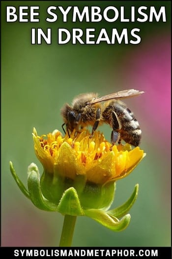 bee dream meanings