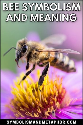 bee symbolism