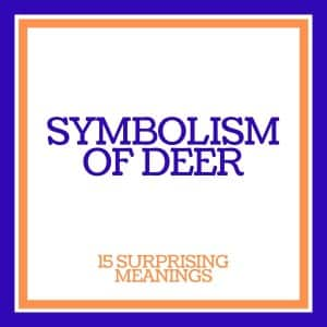symbolism of deer