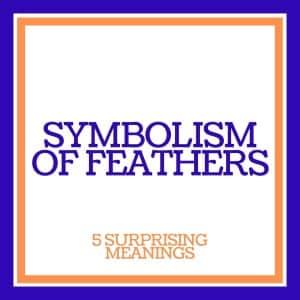 symbolism of feathers