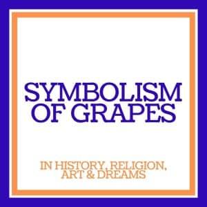 symbolism of grapes