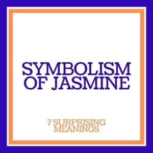 symbolism of jasmine flowers: 7 surprising meanings