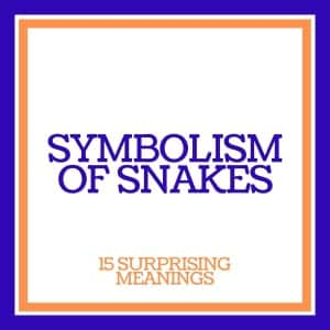 the symbolism of snakes: 15 surprising meanings