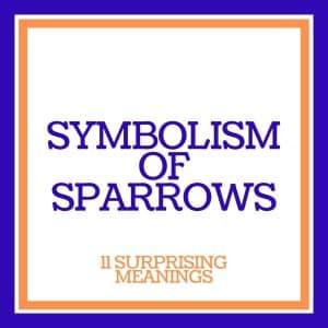 symbolism of sparrows