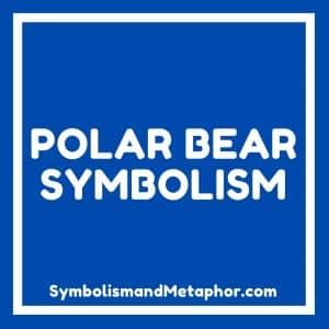 symbolism of the polar bear spirit animal