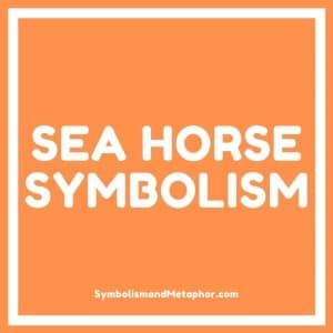 sea horse spirit animal symbolism