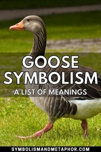 goose symbolism