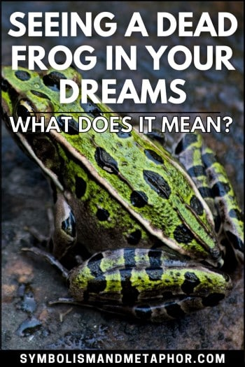 dead frog dream meaning