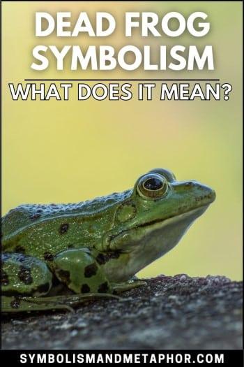 dead frog symbolism